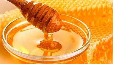 Poslední prázdninová sobota na hradě Lipý ve znamení medu a včel